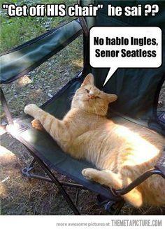 Senior seatless haha