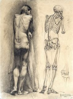 M2::  Russian academic drawing next to a skeleton study in the same pose