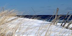 SNOW AND DUNES  by MIKESANDY