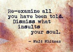Re-examine all you have been told. Dismiss what insults your soul. -Walt Whitman