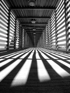 Zebra Crossing Photo by Jeremy Walter -- National Geographic Your Shot Line Photography, Perspective Photography, Shadow Photography, Urban Photography, Abstract Photography, Artistic Photography, Street Photography, Building Photography, Photography Lighting
