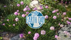 Celebrating Earth Day ... SurfRider.org - Dedicated to the protection and enjoyment of the world's oceans, waves and beaches.  And our Playground!