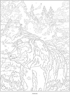 Welcome to Dover Publications Creative Haven Wild Animals Paint by Number animal Tier animale animales животное kočka dyr dierlijke kissa coloring page printable adults prontable Kleuren voor volwassenen Färbung für Erwachsene coloriage pour adultes colorare per adulti para colorear para adultos раскраски для взрослых omalovánky pro dospělé colorir para adultos färgsätta för vuxna farve for voksne väritys aikuiset difficult detailed anti-stress grizzly bear