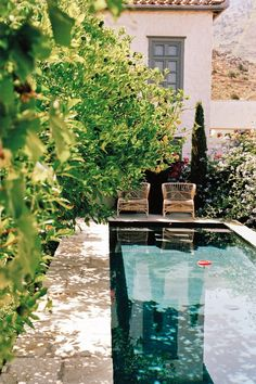 pool backyard pool ideas above ground pool rectangular pool pool landscaping poo. pool backyard pool ideas above ground pool rectangular pool pool landscaping pool party inground po Swimming Pool Designs, Swimming Pools, Garden Swimming Pool, Patio Pergola, Rectangular Pool, Small Pools, Plunge Pool, Dream Pools, Pool Landscaping
