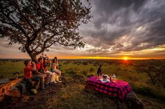 Tanzania safari tour to northern Tanzania will cost you a lot of money but the view and the place is worth visiting once in a lifetime.