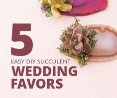 Succulents are so popular these days! They make great DIY unique wedding favors that people are sure to love! Plus, they are easy to make! Even though I'm married I always enjoy looking at wedding florals. There are so many great ideas for bouquets, centerpieces and party favors. It seems succulents are taking a permanent place