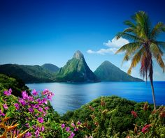 """The Pitons - St. Lucia, Lesser Antilles * Petit Piton is the smaller of the towering Pitons, which rise abruptly from the waters of La Soufriere beach and make St. Lucia one of the Caribbean's most dramatically beautiful islands.  Explore the volcanic origins of these peaks at the islands """"drive-in volcano"""", a lunar landscape with bubbling sulfur mud baths."""