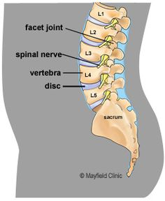 Having Low Back Pain?  Then this is a MUST read, written by a Physical Therapist.