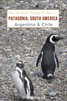 The 20 Best Things to Do in Patagonia (South America) Patagonia Hiking, South America Travel, Culture Travel, Travel With Kids, Cool Places To Visit, Adventure, Travel Guides, Travel Tips