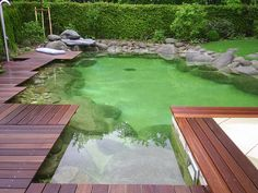 Cool backyard pond design ideas 16 dream pools, swimming pool pond, n Swimming Pool Pond, Natural Swimming Ponds, Natural Pond, Swimming Pool Designs, Modern Pond, Modern Backyard, Outdoor Ponds, Ponds Backyard, Fish Pond Gardens