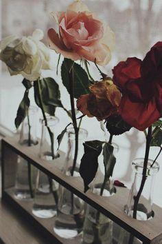 #flower #flowers #roses