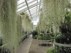 Greenhouse ~ Duke Farms, NJ