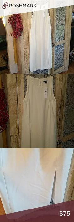 NEW WITH TAG ANN TAYLOR SIZE 6 DRESS.   169 TAG ON Brand new with tag Ann Taylor Dresses