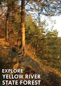 Explore northeast Iowa and Yellow River State Forest this fall before temperatures drop and schedules get hectic | Iowa DNR