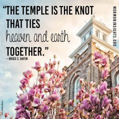 What should a marriage relationship really look like? In the current turbulent discussions surrounding marriage, the answer can be pretty hard to figure out. Fortunately, we can to look to the temple for answers. Click on this pin to go to Mormon Insights and learn more.