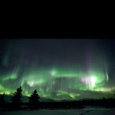 Amazing Aurora display last night in Kenny Lake, Alaska. These were taken by my husband :-)