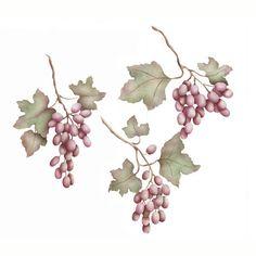 Grape Clusters Fruit Stencils