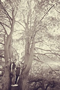 FOREST<3 OMG SO ROMANTIC<3    Possible PICTURE of Forest of Arden(: