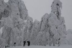 Despite being known for its warm climate and mild winters, the island of Cyprus often experiences snow in the winter ¿ but only in the Troodos Mountains in the centre
