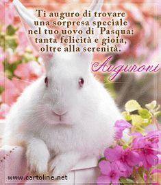 Good Morning, Good Night, Emoticon, Happy Easter, Rabbit, Joy, Animals, Genere, Facebook