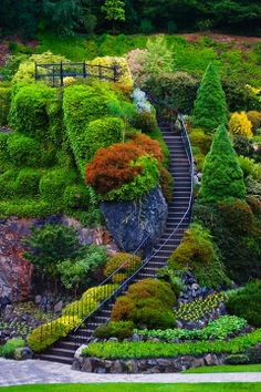 21 amazing mini garden design ideas for your backyard 15 Most Beautiful Gardens, Amazing Gardens, Beautiful Places, Beautiful Stairs, Landscape Design, Garden Design, Buchart Gardens, Victoria Canada, Mediterranean Garden