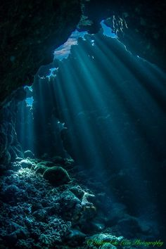 Beams Light beams penetrate the ceiling of an underwater cavern in the Southern Egyptian Red Sea by gabedeleon Water Aesthetic, Blue Aesthetic, Sea And Ocean, Ocean Beach, Underwater Photography, Nature Photography, Underwater Photos, Film Photography, Street Photography