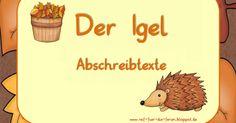 Igel - GS-Abschreibtexte.pdf