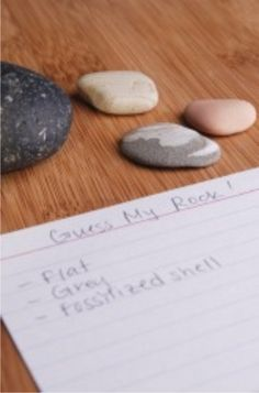 Teach Junkie: Rocks for Kids - 15 Activities and Ideas - Guess My Rock Activity