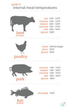 food safety Salt Is Your Friend is part of Meat cooking temperatures - Posts about food safety written by stephmce Grilling Tips, Grilling Recipes, Beef Recipes, Healthy Recipes, Bbq Tips, Thai Recipes, Healthy Foods, Meat Temperature Chart, Gastronomia