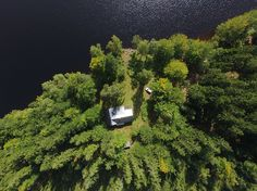 Das Ferienhaus im Naturreservat Fegensee Herbs, Water, Outdoor, Sweden, Sweden House, Beautiful Places, Traveling, Water Water, Outdoors
