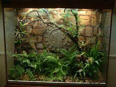 Mayan themed terrarium