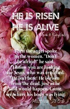 """Then the angel spoke to the women. """"Don't be afraid! """"I know you are looking for Jesus, who was crucified. He is risen from the dead, just as he said would happen. Come, see where his body was lying. Book Of Matthew, Matthew 28, Biblical Quotes, Faith Quotes, Scripture Verses, Bible Scriptures, Resurrection Day, Sisters In Christ, Love The Lord"""
