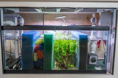 Detailed information on a freshwater sump (plus bonus DIY stand)