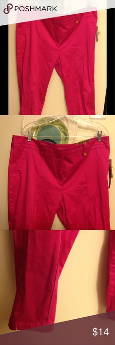 NWT Pink Capri Pants Sz 16 Attractive JM COLLECTIONS SZ 16. Pink Capri Pants w/Sm slit on each bottom leg. Zippers,Clips,and buttons. Nice Quality Capris 2 Front pockets w/ rear pocket design. Built in elastic waist for some stretch, but can not tell by the look. Pants Capris