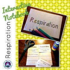 Interactive Notebook activities for Respiration.Includes:Tab Book for Cellular Respiration. Covers:-What do our cells need energy for?-Aerobic Respiration-Mitochondria-Anaerobic Respiration in Yeast-Anaerobic Respiration in HumansComparing Aerobic and Anaerobic Respiration Card SortThese activity can be used for a range of grades or abilities depending on the amount of information added by the students.*****************************************************************************You might…