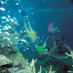 Snorkel at the Great Barrier Reef