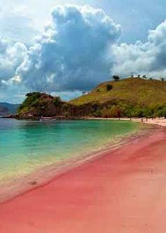 .~Pink Beach Komodo Island, East Nusa Tenggara, Indonesia~.