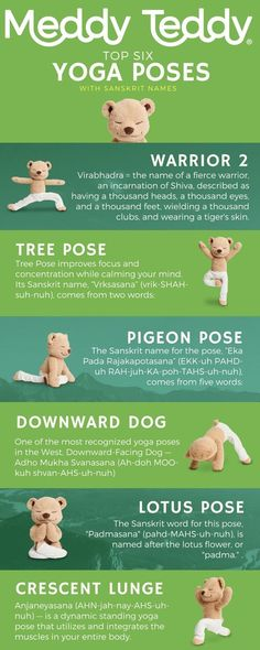 Meddy Teddy, the yoga and mindfulness bear. Learn Meddy's favorite yoga poses for kids.