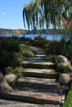 Stairs Leading To Fire Pit Seating Area Kirkland Waterfront Simply Garden Design Llc