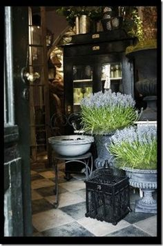 pretty garden shop - love the urns and the bird cage