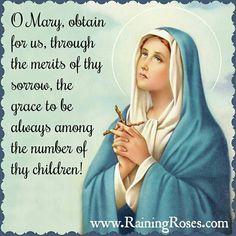 Catholic Beliefs, Catholic Quotes, Catholic Prayers, Catholic Saints, Roman Catholic, Religious Pictures, Religious Icons, Blessed Mother Mary, Blessed Virgin Mary