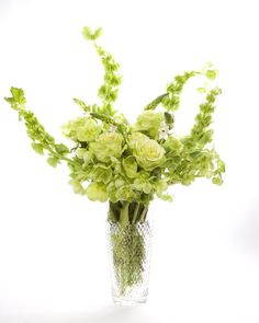 St. Patricks Day arrangement using snowball vibernum, sweat william, lady's mantle, green spider mums, hydrangeas, hellebores, euphorbia, bells of Ireland, trachellium, crystal white, hypericon, green tea roses, super green roses, peppermint, green parrot tulips, and ming fern