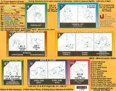 Risultati immagini per upledger 10 step protocol poster