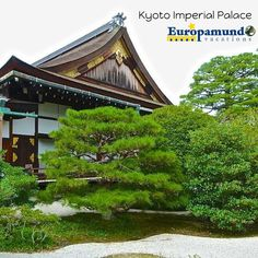 Discover  Japan with #Europamundo