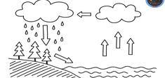 Fichas para trabajar los números 0 al 9 - Imagenes Educativas Earth Science Activities, Science Worksheets, Preschool Education, Early Education, Worksheets For Kids, Science For Kids, Preschool Activities, Weather Kindergarten, Teaching Kindergarten