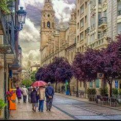 Una ciudad con encanto Logroño