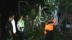 Bhabinkamtibmas Evakuasi Pohon Roboh Mengenai Rumah Tribratanews Polda Jatim