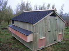 8ft x 6ft 'Ledbury' Free Range Poultry House (50 hens)