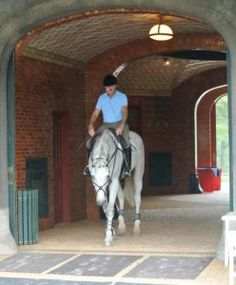 8 Best USET images in 2014   Equestrian, Horses, United states