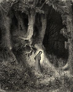Dore art print: Gustave Dore illustration to The Divine Comedy, Inferno, Canto Dante in the Dusky Woods. Gustave Dore, Dante Alighieri, Art And Illustration, Book Illustrations, Rockwell Kent, Norman Rockwell, Dom Quixote, Arte Obscura, Dark Forest